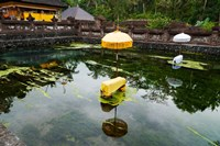 Covered stones with umbrella in ritual pool at holy spring temple, Tirta Empul Temple, Tampaksiring, Bali, Indonesia Fine Art Print