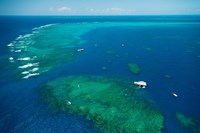 Aerial View of Great Barrier Reef, Queensland, Australia Fine Art Print