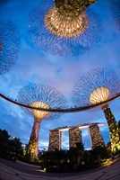 Elevated walkway at Gardens by the Bay, Singapore by Panoramic Images - various sizes, FulcrumGallery.com brand
