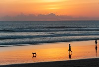 Silhouette of people and dog walking on the beach, Seminyak, Kuta, Bali, Indonesia by Panoramic Images - various sizes, FulcrumGallery.com brand