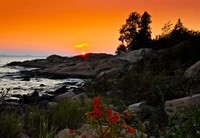Rock formations on the coast, Georgian Bay, Ontario, Canada by Panoramic Images - various sizes