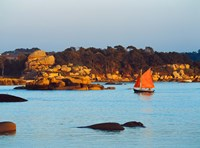 Traditional sailing boat in an ocean, Cotes-d'Armor, Brittany, France by Panoramic Images - various sizes