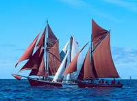 Three Tall ships in the Baie De Douarnenez, France by Panoramic Images - various sizes - $56.49