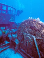 Doc Polson Wreck in the sea, Grand Cayman, Cayman Islands Fine Art Print