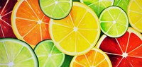 Fruit Slices Fine Art Print