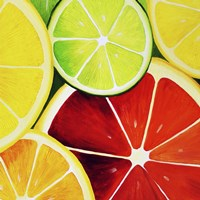 Sliced Grapefruit Fine Art Print