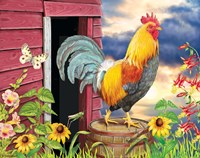 Barnyard Morning Fine Art Print