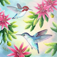 Bee Hummingbirds Fine Art Print