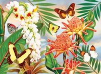 Butterflies With Torch Ginger Fine Art Print