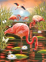 Flamingos-Vertical Fine Art Print