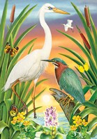 Green And White Herons Fine Art Print