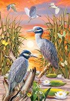 Night Herons by Rosiland Solomon - various sizes