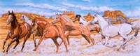 Desert Run Fine Art Print