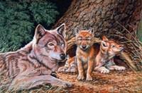 Wolf Den Fine Art Print