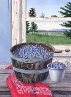 Blueberries And Red Bandana Fine Art Print