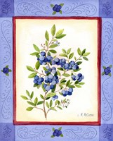Blueberries by Maureen Mccarthy - various sizes, FulcrumGallery.com brand