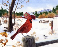 Cardinal Mornings by Maureen Mccarthy - various sizes