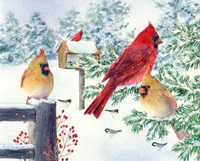 Cardinals In Snow Flurry Fine Art Print