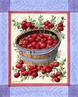 Cranberries Fine Art Print