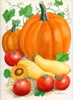 Pumpkins, Tomatoes and Squash by Maureen Mccarthy - various sizes