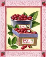 Red Raspberries Fine Art Print