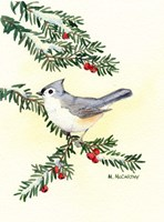 Tufted Titmouse by Maureen Mccarthy - various sizes, FulcrumGallery.com brand