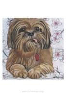 """Dlynn's Dogs - Cody by Dlynn Roll - 13"""" x 19"""""""