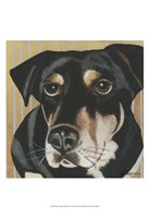"Dlynn's Dogs - Ginger by Dlynn Roll - 13"" x 19"" - $12.99"