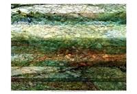 "Lines of Nature I by Danielle Harrington - 19"" x 13"", FulcrumGallery.com brand"