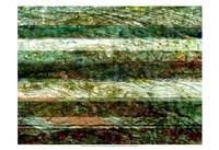 "Lines of Nature II by Danielle Harrington - 19"" x 13"", FulcrumGallery.com brand"