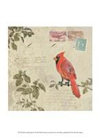 Bird & Postage IV Fine Art Print