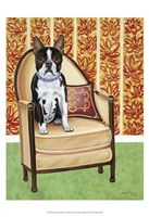 "Oreo Cookie Boston by Carolee Vitaletti - 13"" x 19"""