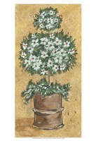 "Weathered Topiaries I by Carolee Vitaletti - 13"" x 19"" - $12.99"