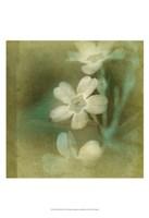 "Pastel Paths X by Jennifer Jorgensen - 13"" x 19"""