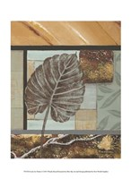 """10"""" x 13"""" Leaf Pictures"""