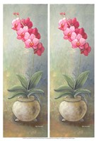 "2-Up Orchid Vertical by Wendy Russell - 13"" x 19"""