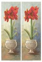 "13"" x 19"" Floral Botanical"