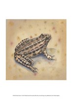 """Pond Critters I by Wendy Russell - 10"""" x 13"""""""