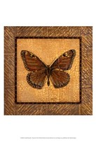 Crackled Butterfly - Monarch Fine Art Print