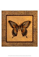 Crackled Butterfly - Swallowtail Fine Art Print