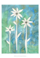 "Dainty Daisies I by Alicia Ludwig - 13"" x 19"" - $12.99"