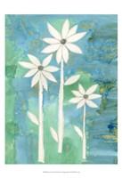 "Dainty Daisies II by Alicia Ludwig - 13"" x 19"" - $12.99"