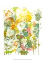 """Spring has Sprung I by Jodi Fuchs - 10"""" x 13"""""""
