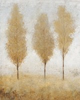 Autumn Springs I by Timothy O'Toole - various sizes - $25.49