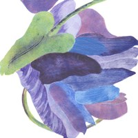 Sideways Indigo II Fine Art Print