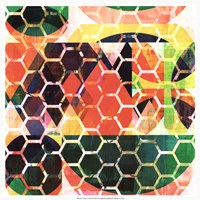 Honey Comb II Fine Art Print