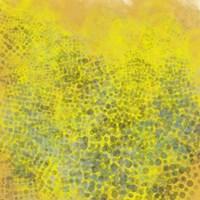 Hive II Fine Art Print