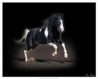 Horse Portrait VIII Fine Art Print