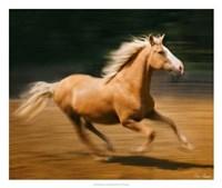 Blazing Horse I Fine Art Print