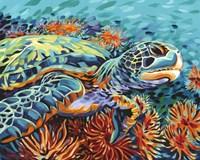 Sea Sweetheart I by Carolee Vitaletti - various sizes